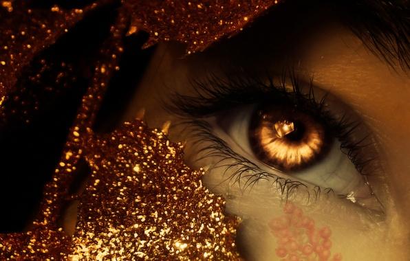 Picture macro, berries, figure, Shine, Eyes, tinsel, amber eyes