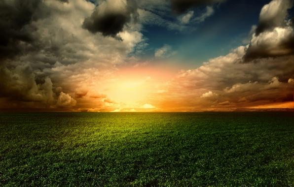 Picture field, the sky, grass, sunset, sky, landscape, nature, sunset