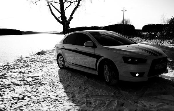 Picture black and white, Tree, Snow, Traces, Mitsubishi, Lancer X10