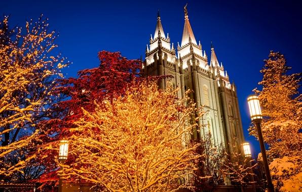 Picture winter, light, trees, night, the city, lights, area, lights, Church, Utah, USA, USA, garland, holidays, ...