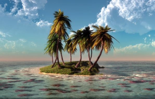 Picture sea, water, clouds, nature, palm trees, island, corals, art, klontak