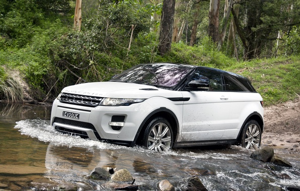 Picture forest, white, trees, stones, coupe, jeep, speaker, Land Rover, range rover, coupe, the front, crossover, …