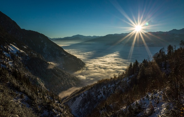Picture trees, sunset, snow, fog, Mountains