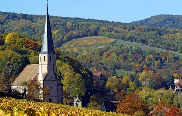 Picture autumn, forest, the sky, leaves, trees, hills, field, horizon, Church