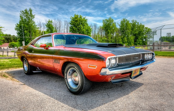 Picture HDR, Dodge Challenger, 1970, the front, Dodge Chelenzher