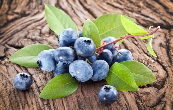 Picture berries, blueberries, fresh, wood, blueberry, blueberries, berries