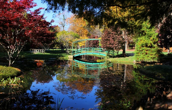 Picture photo, Nature, Trees, River, Pond, Park, USA, Bridges, Ball Ground, Gibbs Gardens