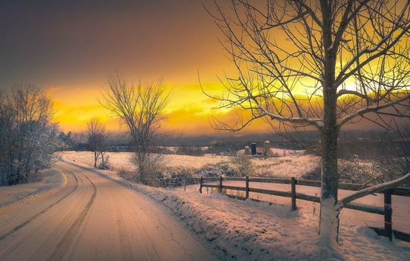 Picture winter, road, the sky, clouds, snow, trees, the evening, glow