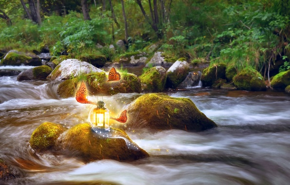 Picture greens, water, light, trees, butterfly, nature, stream, stones, moss, art, lantern, Larisa Koshkina