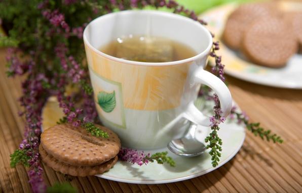 Picture tea, cookies, Cup, drink, cup, drink, tea, biscuits