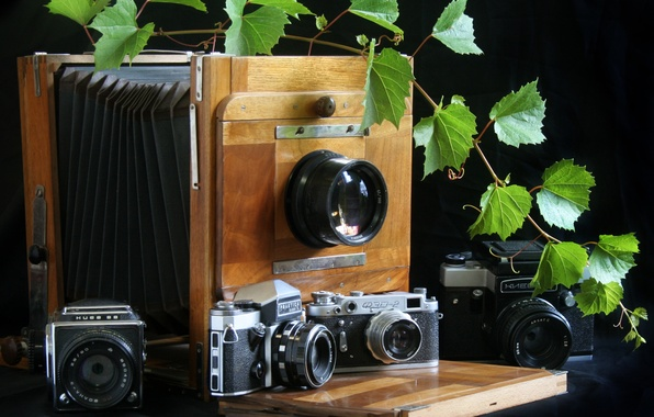 """Picture background, cameras, case, lenses, diaphragm, gates, """"Fed-2"""", large, a bunch of grapes, tape, """"Kiev 88"""", …"""