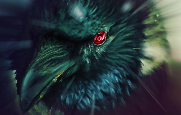 Picture eyes, Raven, Naruto, Naruto, art, Sharingan, tsxworld