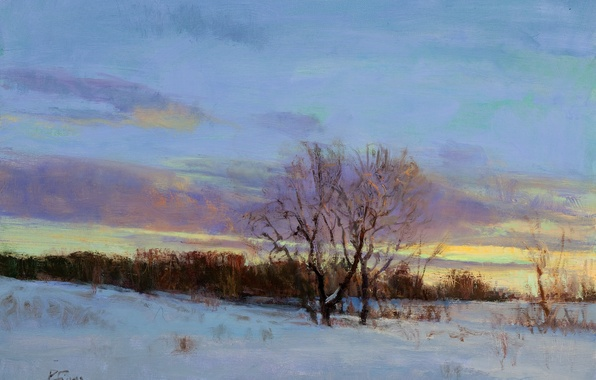 Picture winter, the sky, clouds, light, snow, landscape, sunset, branches, tree, picture, art, twilight, Peter Flower, ...