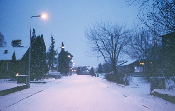 Picture winter, light, trees, street, home, lamp post