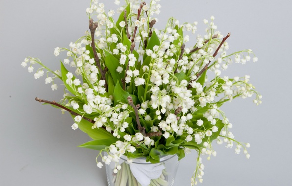Picture flower, flowers, nature, bouquet, spring, lilies of the valley, spring, landuse
