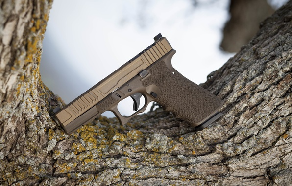 Picture weapons, tree, Austria, Glock, self-loading pistol