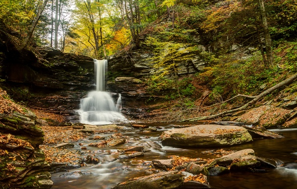 Picture autumn, forest, river, stones, waterfall, PA, Pennsylvania, Sheldon Reynolds Falls, Ricketts Glen State Park