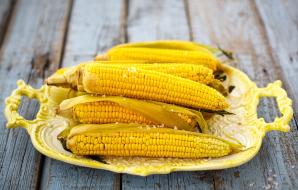 Picture yellow, background, widescreen, Wallpaper, food, corn, plate, wallpaper, cereals, widescreen, background, full screen, HD wallpapers, …