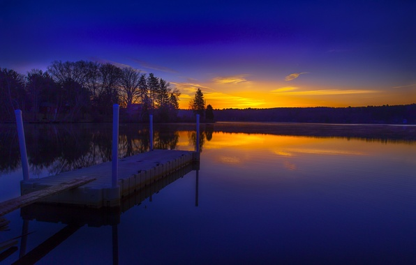 Picture forest, lake, dawn, morning, the bridge