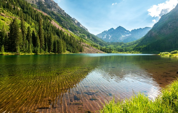 Picture forest, the sky, water, transparency, trees, mountains, lake