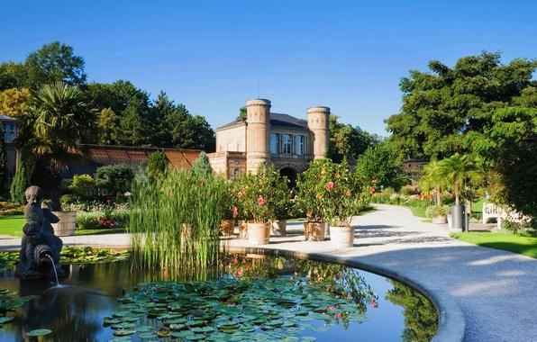 Wallpaper flowers karlsruhe botanical garden baden w rttemberg germany pool fountain - Pool karlsruhe ...