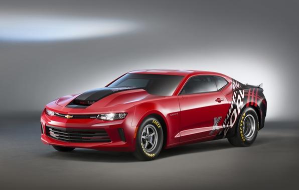 Picture Chevrolet, Camaro, Chevrolet, Camaro, COPO