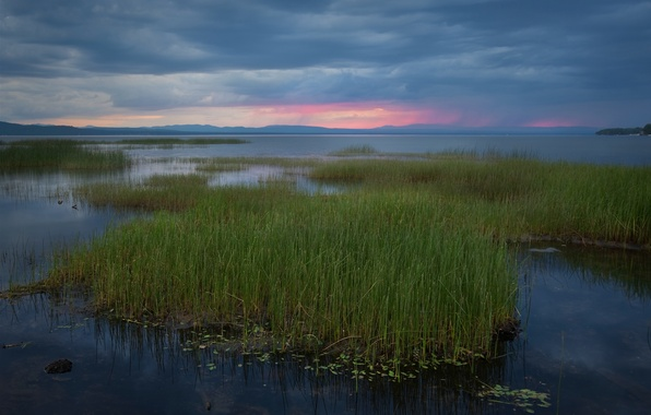 Picture the sky, grass, sunset, clouds, lake, shore, the evening, reed, USA, blue, Vermont