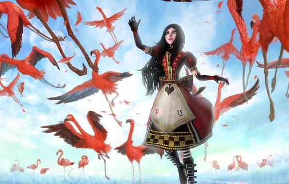 Picture girl, birds, art, Alice, pink, Flamingo, Alice Madness Returns, phoenix-zhuzh