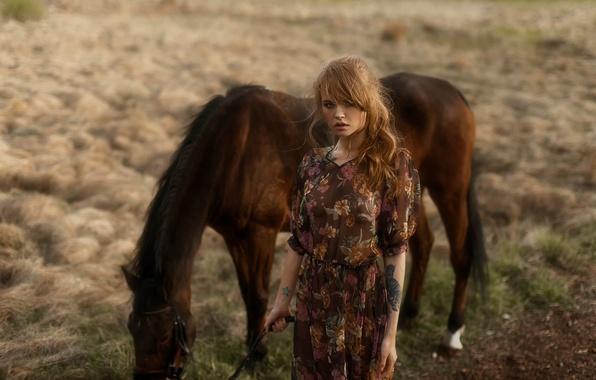 Picture look, nature, tattoo, horse, Nastya, Anastasia Shcheglova, Tatiana Mercalova