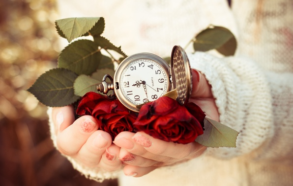Picture leaves, time, watch, roses, hands, dial, sweater, answers