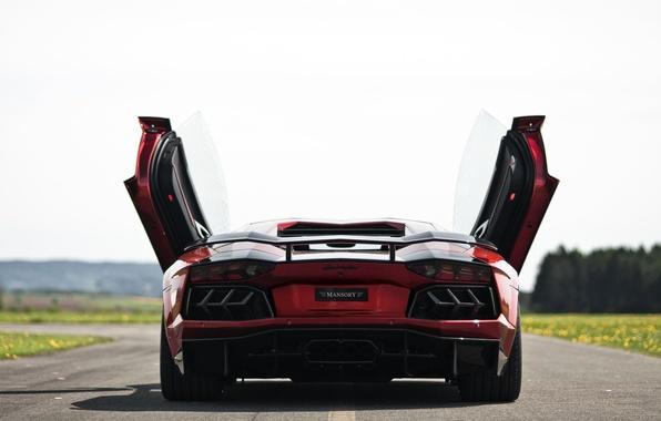 Picture road, ass, door, supercar, Lamborghini Aventador