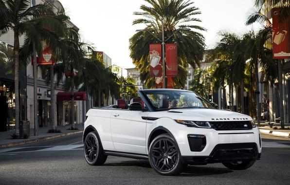 Picture the city, palm trees, street, Land Rover, Range Rover, convertible, Evoque, Ewok, land Rover, range …