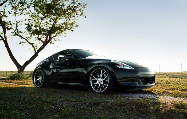 Picture The sky, Nature, Field, Auto, Tree, Grass, Tuning, Machine, Nissan, 370Z