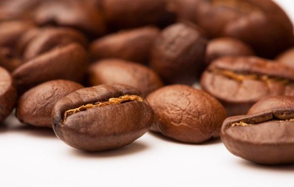 Picture macro, coffee, grain, beans, coffee