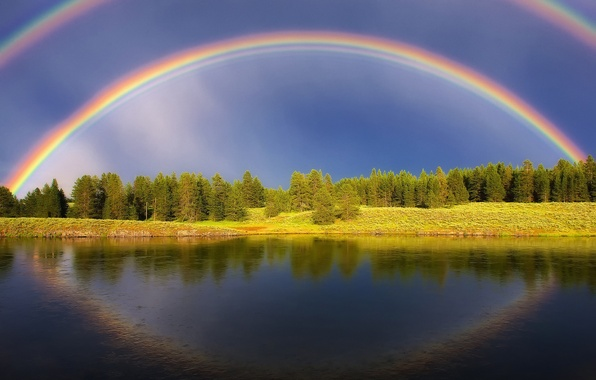 Picture forest, summer, the sky, water, light, lake, river, rainbow, pond