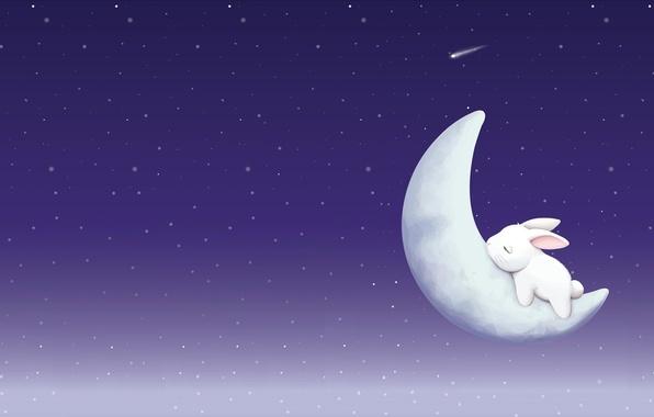 Wallpaper Night, Sleep, Stars, A Month, Art, Bunny
