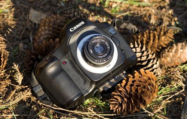 Picture background, blur, the camera, bumps, Canon
