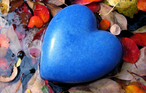 Picture leaves, water, love, blue, mood, blue, stone, heart, feelings, color, puddle, form