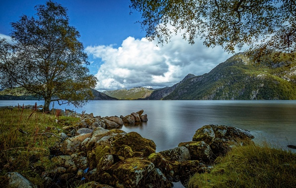 Picture mountains, lake, stones, tree, Norway, Norway, Rogaland, Rogaland, The bjerkreim, Austrumdalsvatnet, Bjerkreim