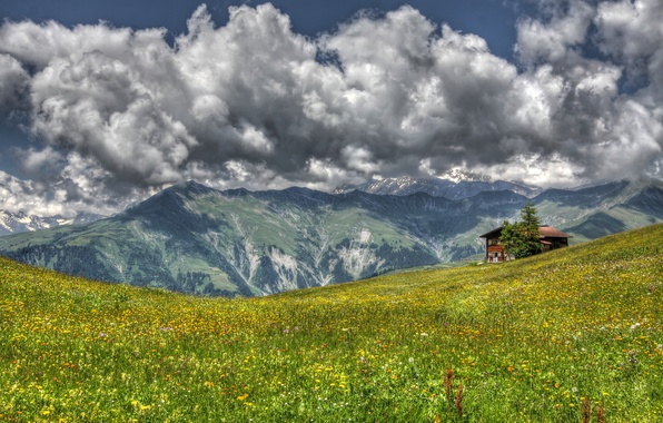 Picture grass, landscape, flowers, mountains, house, meadow