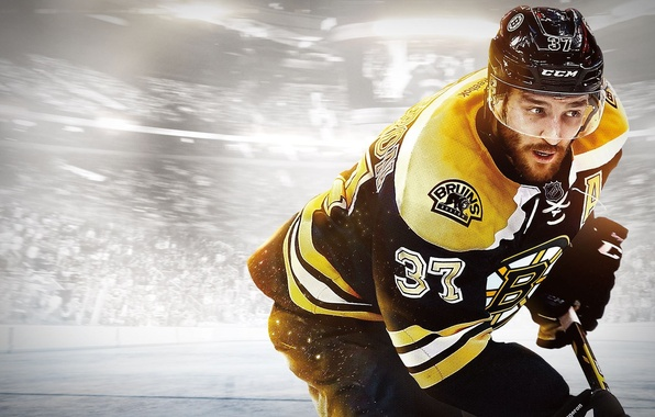 Picture gloves, helmet, stick, hockey, player, EA Sports, Bruins, EA Canada, Patrice Bergeron, NHL 15, Patrice …