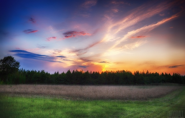 Picture forest, the sky, clouds, meadow, photographer, Aaron Woodall, scarlet sunset