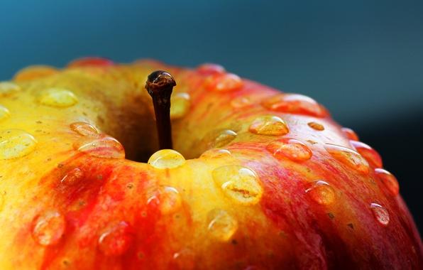 Picture drops, macro, Apple