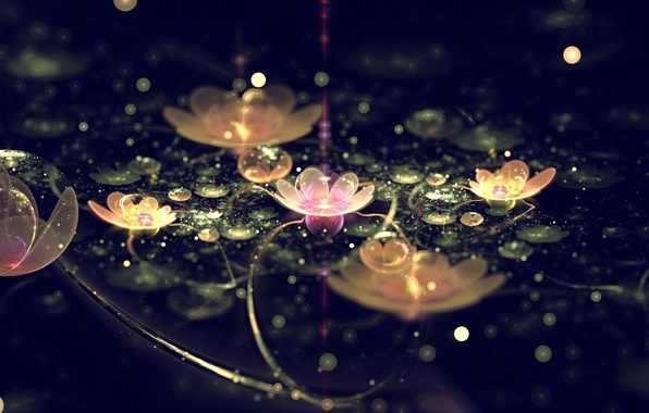 Picture ART, PETALS, FLOWER, FLOWERS, LIGHTS, ABSTRACTION