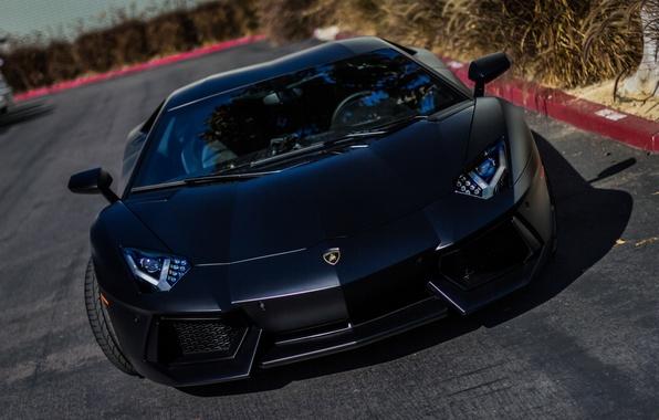 Picture black, Lamborghini, supercar, black, LP700-4, Aventador, Lamborghini