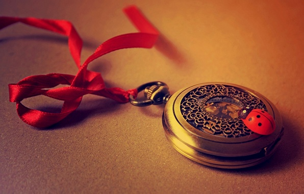 Picture red, time, watch, ladybug, tape, red, time, clock, ribbon, ladybird