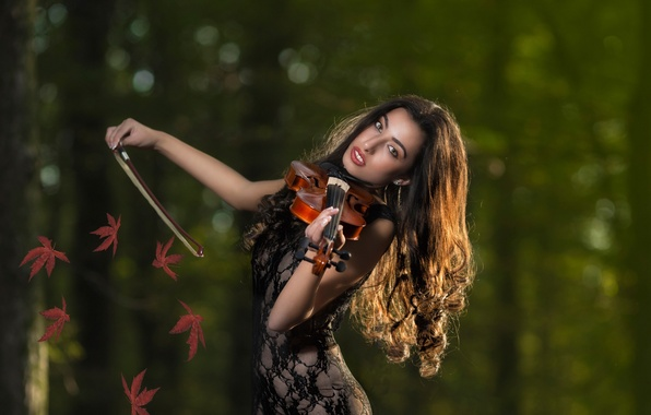 Picture leaves, violin, violinist, autumn melody