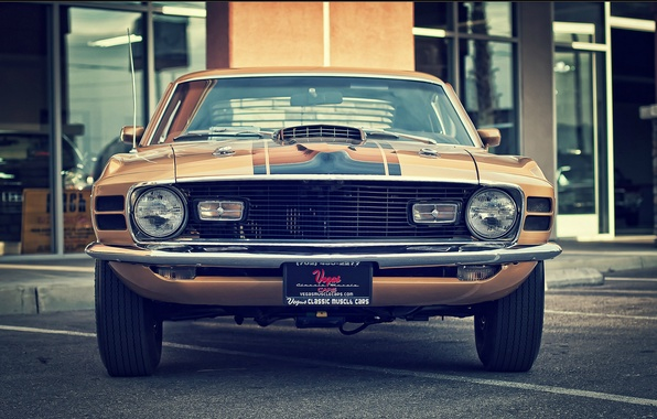 Picture mustang, ford, vintage, 1970, classic, mach 1