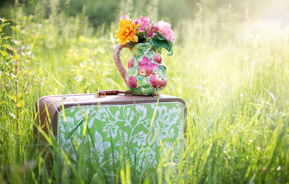 Picture summer, grass, flowers, nature, suitcase, pitcher