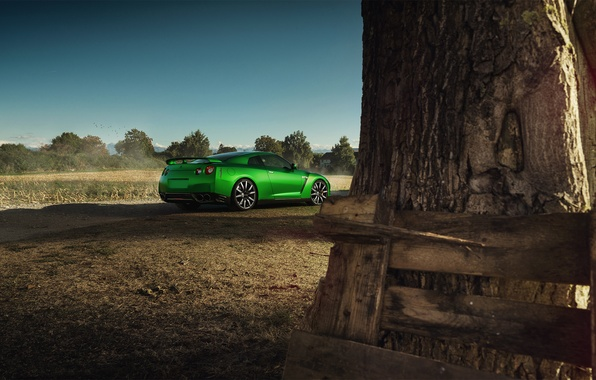 Picture Nissan, GT-R, Car, Nature, Green, Beauty, Sport, Rear